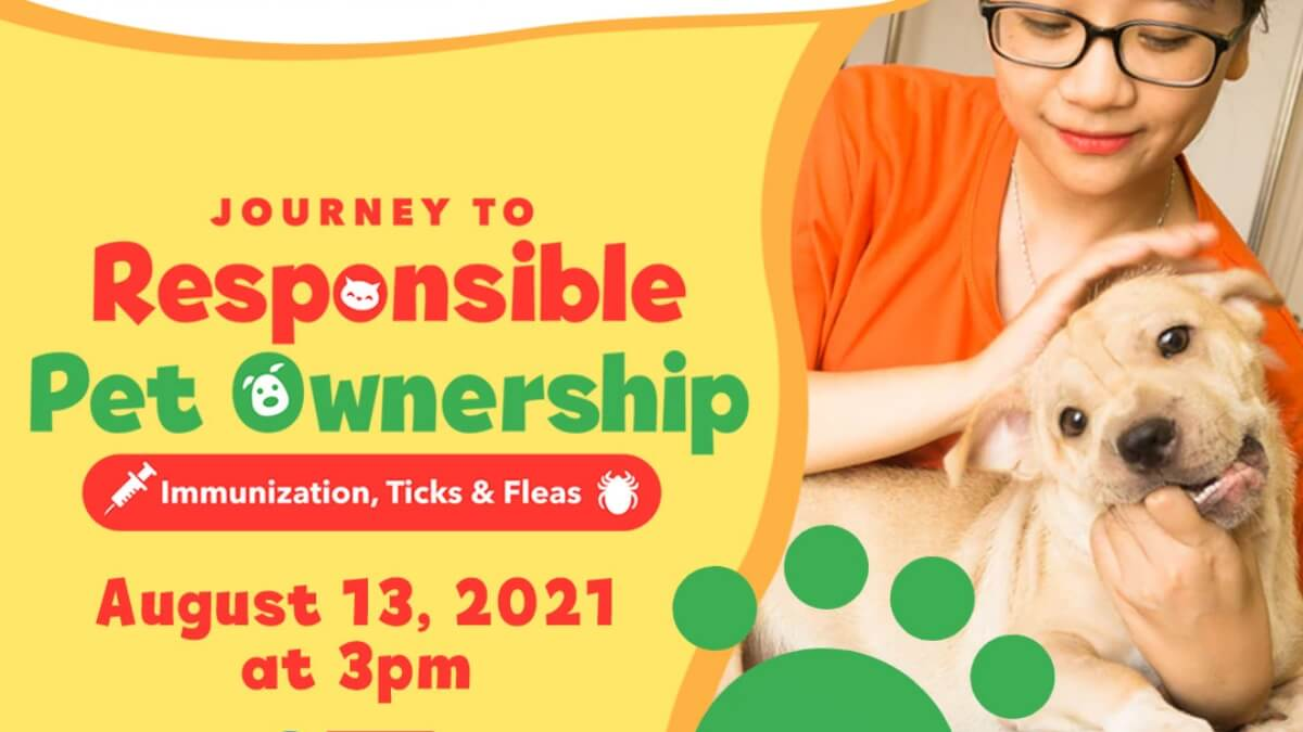 Read more about the article Learn Responsible Pet Ownership Through the Pet Konsulta Webinar Series